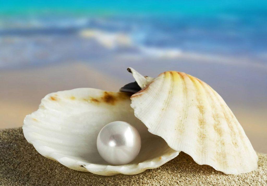 """Résultat de recherche d'images pour """"images perles"""""""